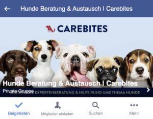 Pfotenwiki Facebook Gruppe Hundeaustausch